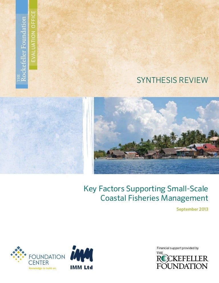 A Synthesis Review of Key Lessons in Programs Relating to