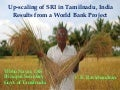 1803 Up-scaling of SRI in Tamilnadu, India: Results from a World Bank Project
