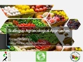 Scaling up agroecological approaches in Nepal
