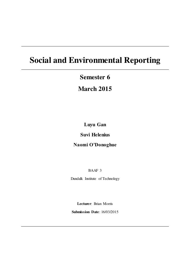 social and environmental reporting an essay