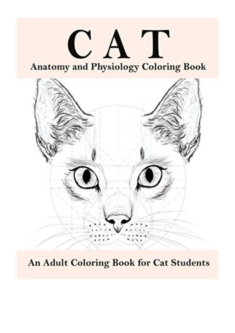 Cat Anatomy And Physiology Coloring Book Pdf Boston Summer An Adult