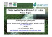 Water availability and Productivity in the Andes Region