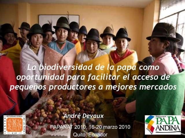 La biodiversidad de la papa como oportunidad para facilitar el acceso de pequeños productores a mejores mercados