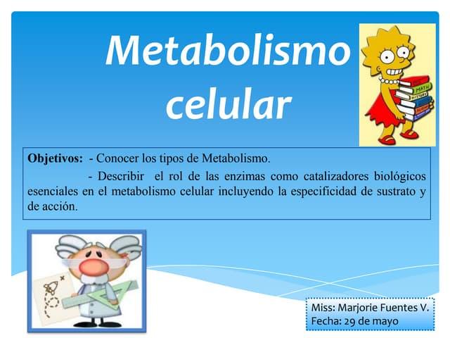 Reasearch en que es la tasa de metabolismo basal