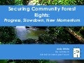 Securing Community Forest Rights:  Progress, Slowdown, New Momentum