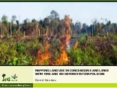 Mapping Land Use in Concessions and Links with Fire and No-Deforestation Policies