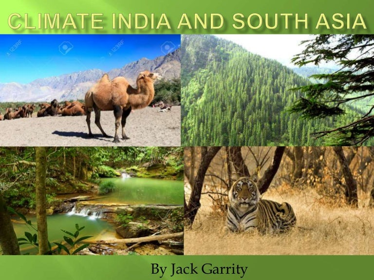 Asian climate and wild life