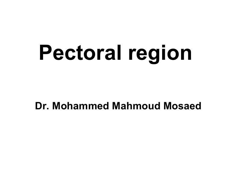 Anatomy Of Pectoral Region