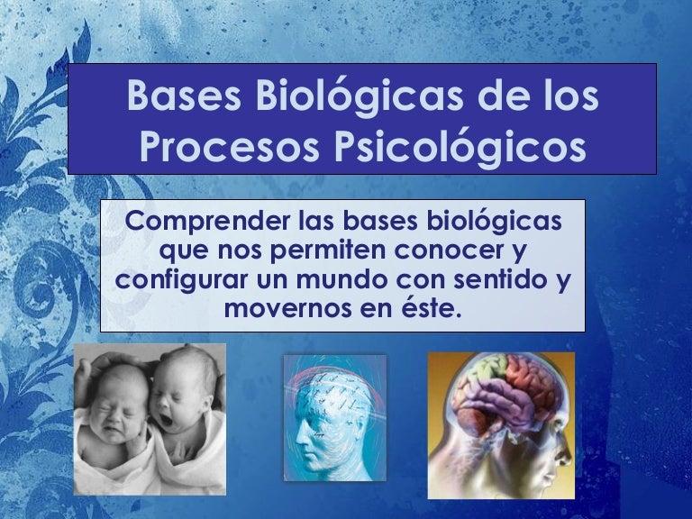 2 Bases Biológicas De Los Procesos Psicológicos