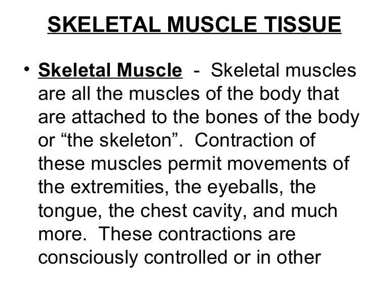 2 Skeletal Muscle Tissue