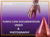 Purple Cow  Documentation  via Video and Photography  by  Rachel Timmins