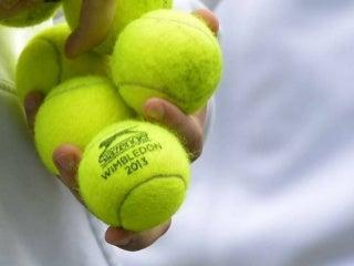 2013 Wimbledon Final
