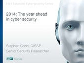 The Year Ahead in Cyber Security: 2014 edition