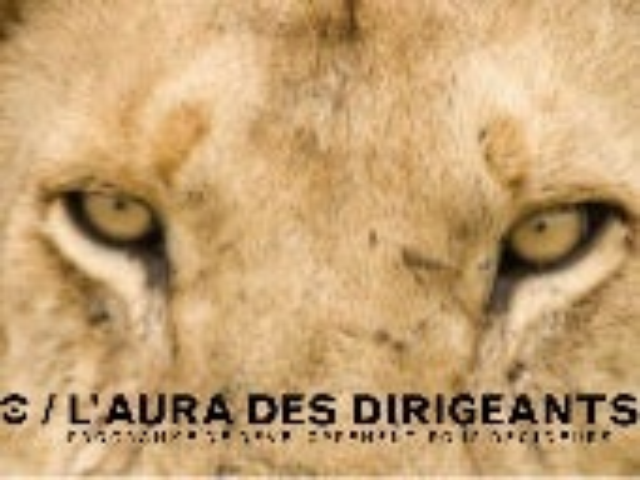 Orchestraaa: L'Aura des Dirigeants au Pecha Kucha Mons 10/2014