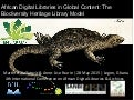 African Digital Libraries in Global Content: The Biodiversity Heritage Library Model
