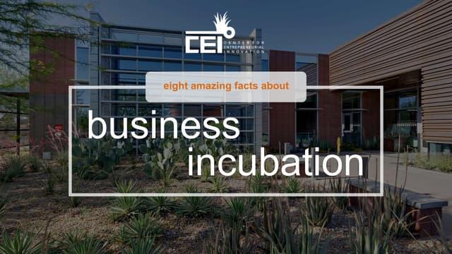 8 Amazing Facts about Business Incubators & Accelerators