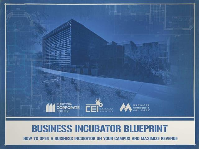 Business Incubator Blueprint: How to Open a Business Incubator and Maximize Revenue