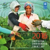 2016 UNDP-GEF Annual Performance Report