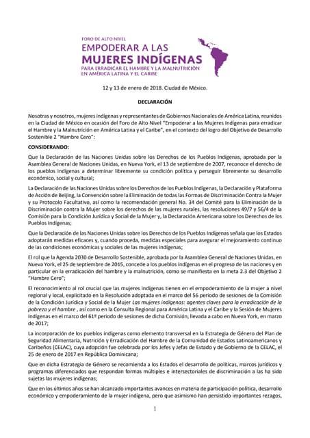 Declaración Foro alto nivel Mujeres Indígenas