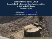 2018 Oct Somerville Tree Presentation