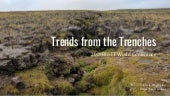 Trends from the Trenches: 2019