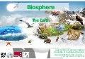 2019 tg biosphere