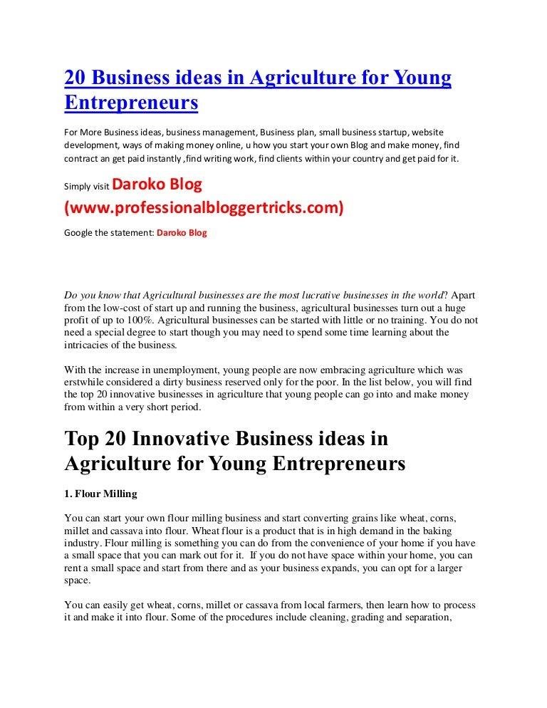 resume examples entrepreneur