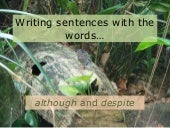 Combining sentences with the words although and despite