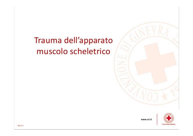 Traumatismo Toracico Epub Download