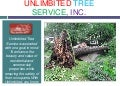24 Hour Emergency Tree Removal & Storm Damage