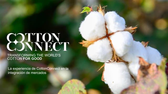 La experiencia de Cotton Connect en la integración de mercados – Julio Villareal