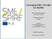 Leveraging SMEs' Strenght for INSPIRE