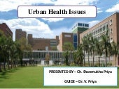 Urban Health Issues in India