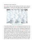 28. một số hạn chế của phấn nụ