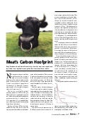 Meat's Carbon Hoofprint
