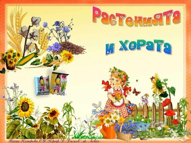 29. Растенията и хората. Селскостопански, диворастящи растения, билки -ОС, Анубис, В. П.