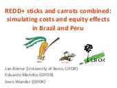 REDD+ sticks and carrots combined: simulating costs and equity effects in Brazil and Peru