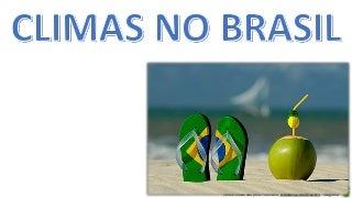 camiseta brasil estilizada
