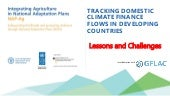 NAP-Ag Webinar - Tracking Domestic Climate Finance Flows - Lessons and Challenges