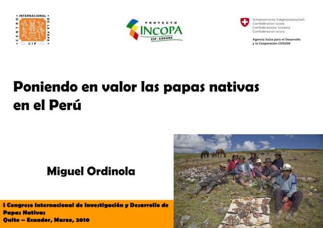 Poniendo en valor las papas nativas en el Perú