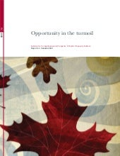 Report on Canada 2009, Opportunity in the turmoil