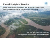 From Principle to Practice: Achieving Coastal Mitigation and Adaptation Outcomes through Demonstration Projects and Upscaling