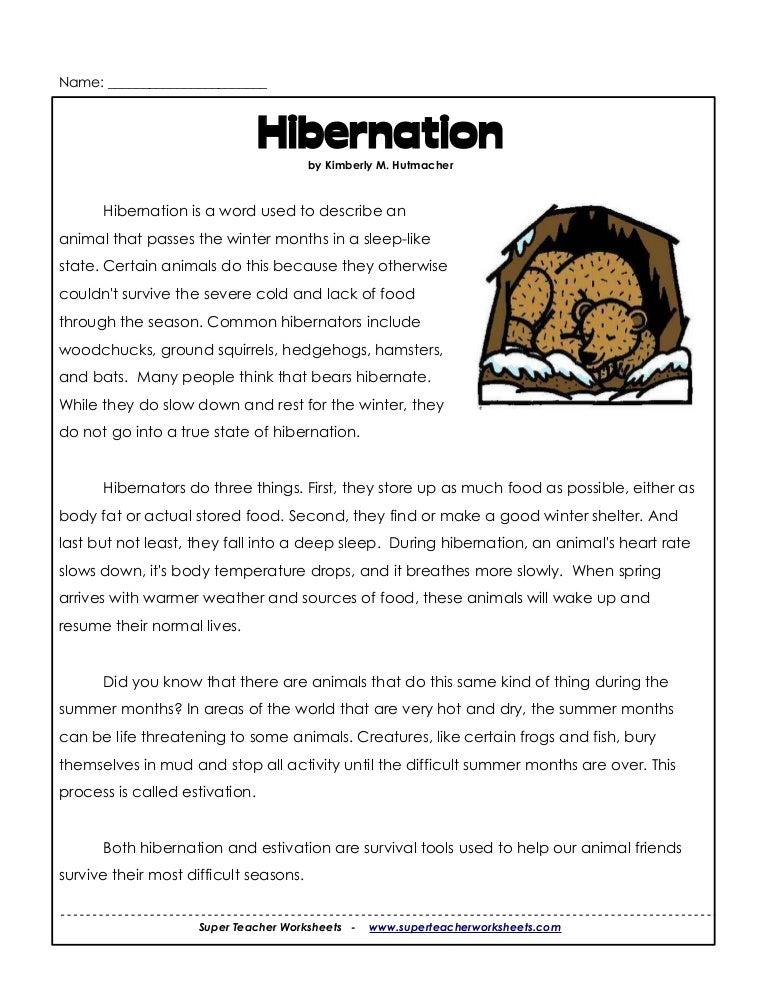 Worksheets Hibernation Worksheets 3rd hibernation