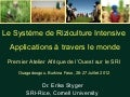 1287-Le Système de Riziculture Intensive Applications à travers le monde