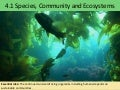 4.1 species, communities and ecosystems