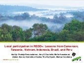Local participatin in REDD+: Lessons from Cameroon, Tanzania, Vietnam, Indonesia, Brazil and Peru