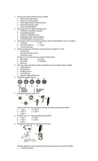 Class 5 Cbse Science Question Paper FA 2