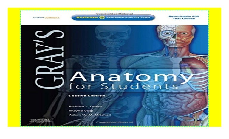 Grays Anatomy For Students With Student Consult Online Access 2e