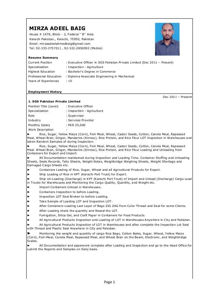 mirza adeel baig sgs cv pdf format pdf