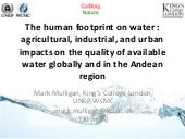 The human footprint on water : agricultural, industrial, and urban impacts on the quality of available water globally and in the Andean region
